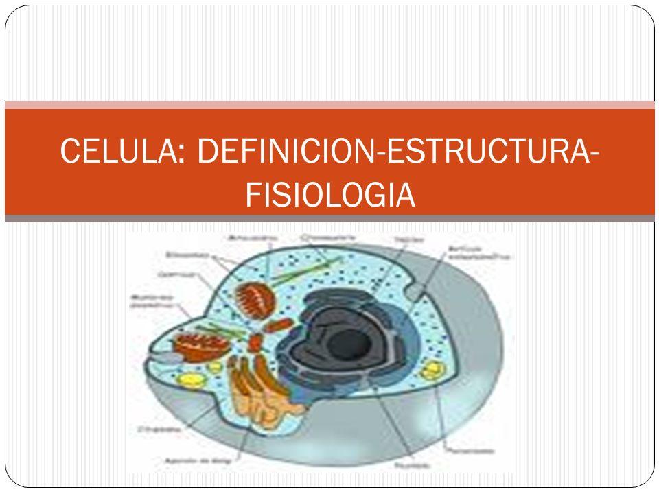 DEFINICION: Las células son las unidades funcionales de todos los organismos vivos.