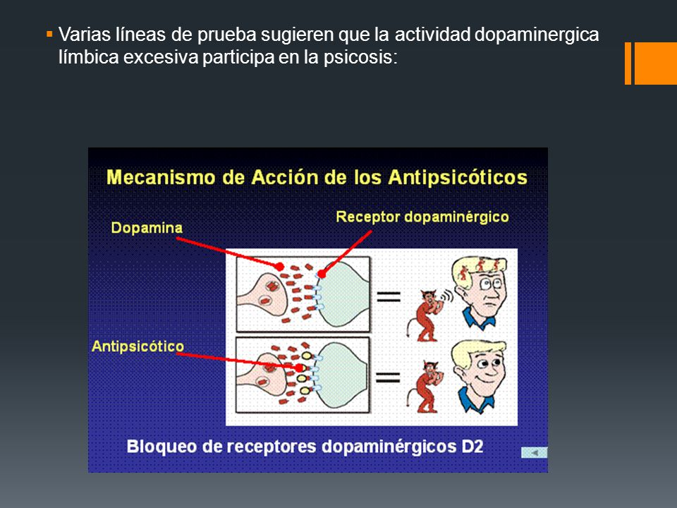 Hipótesis de la Dopamina en la esquizofrenia Constituyo el primer concepto a perfeccionar basado en neurotransmisores, pero ya no se considera adecuad
