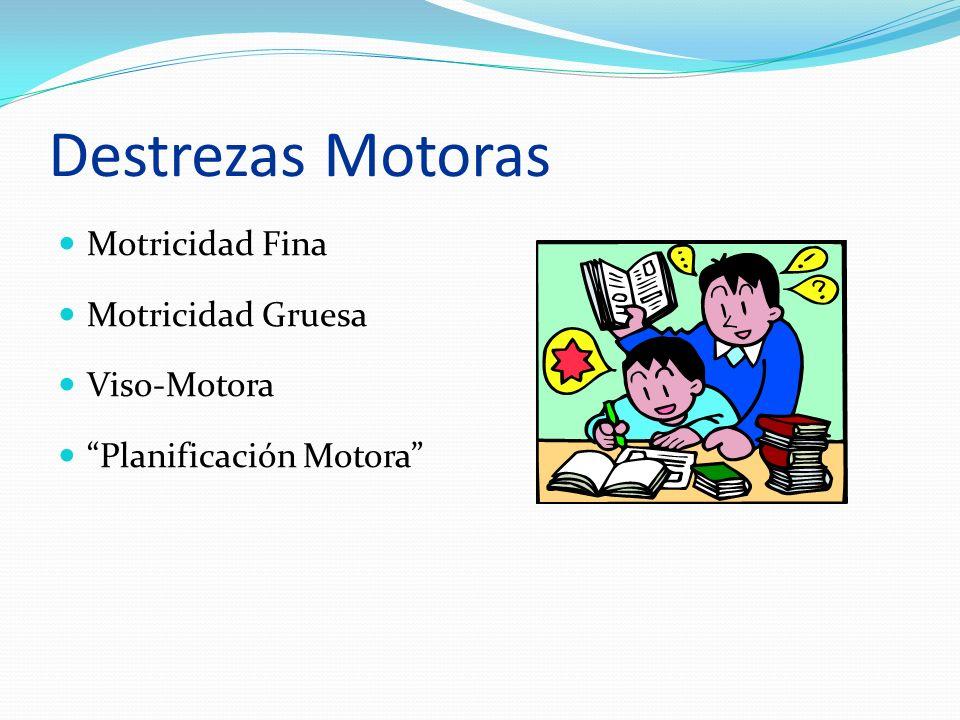 Destrezas Motoras Motricidad Fina Motricidad Gruesa Viso-Motora Planificación Motora
