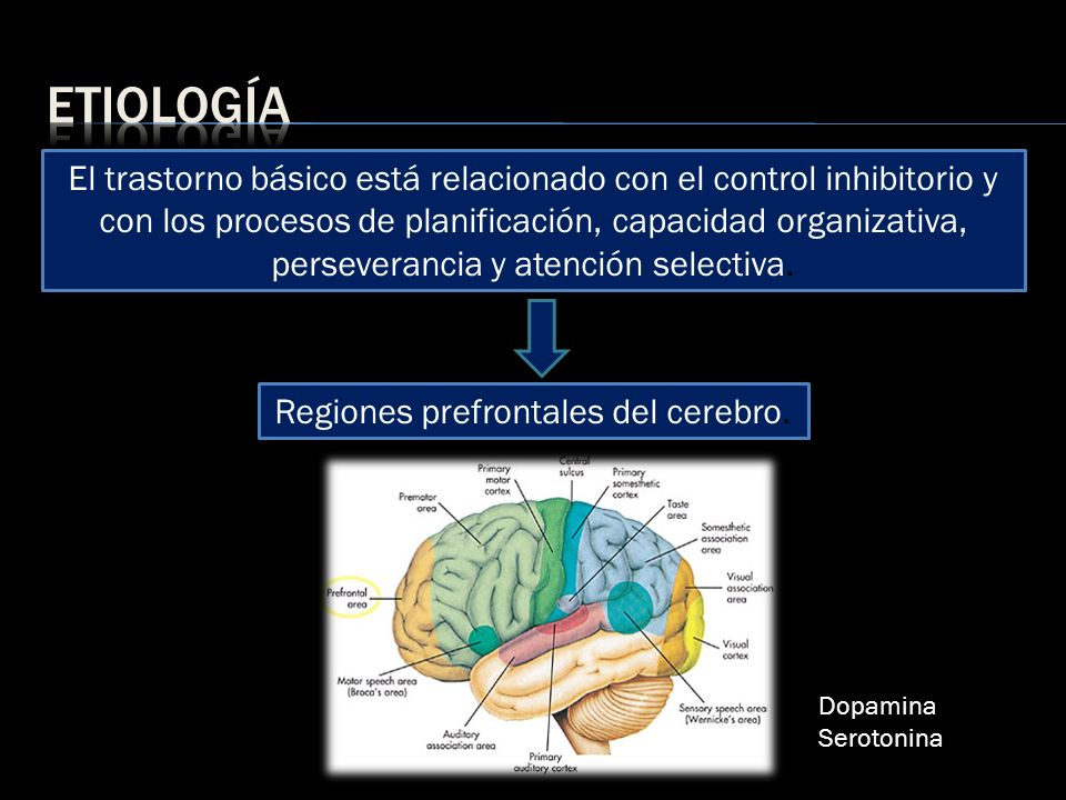 El trastorno básico está relacionado con el control inhibitorio y con los procesos de planificación, capacidad organizativa, perseverancia y atención