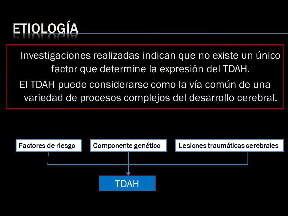 Investigaciones realizadas indican que no existe un único factor que determine la expresión del TDAH. El TDAH puede considerarse como la vía común de