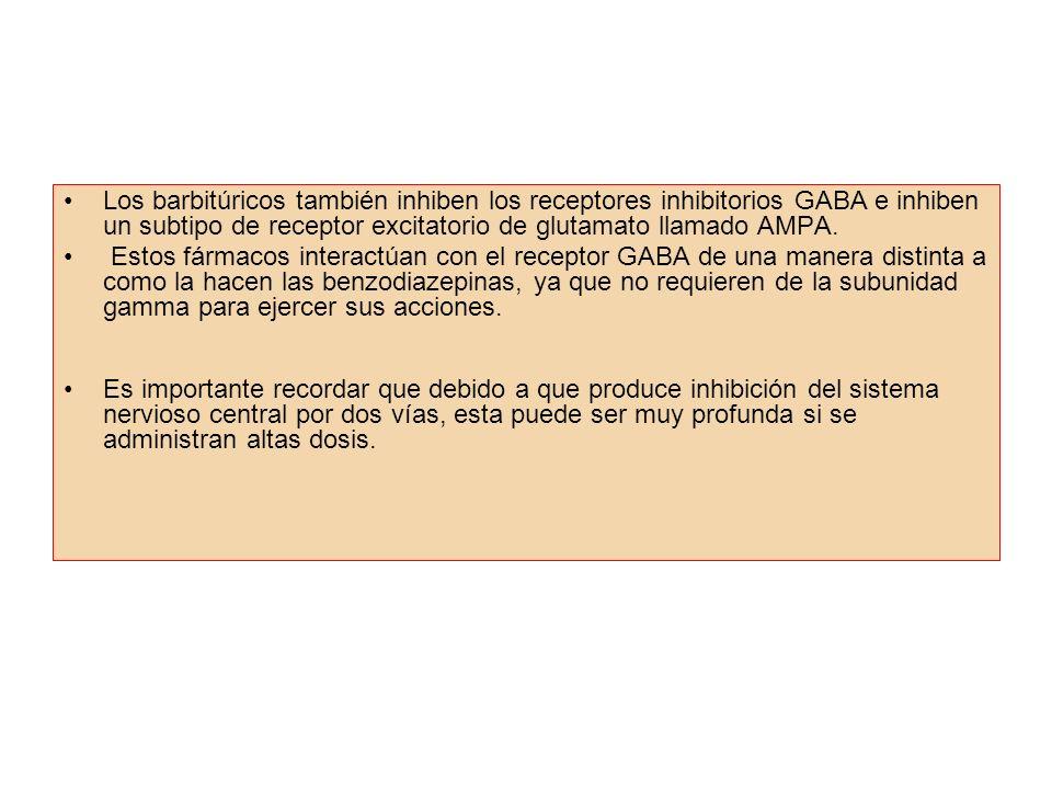 Los barbitúricos también inhiben los receptores inhibitorios GABA e inhiben un subtipo de receptor excitatorio de glutamato llamado AMPA. Estos fármac