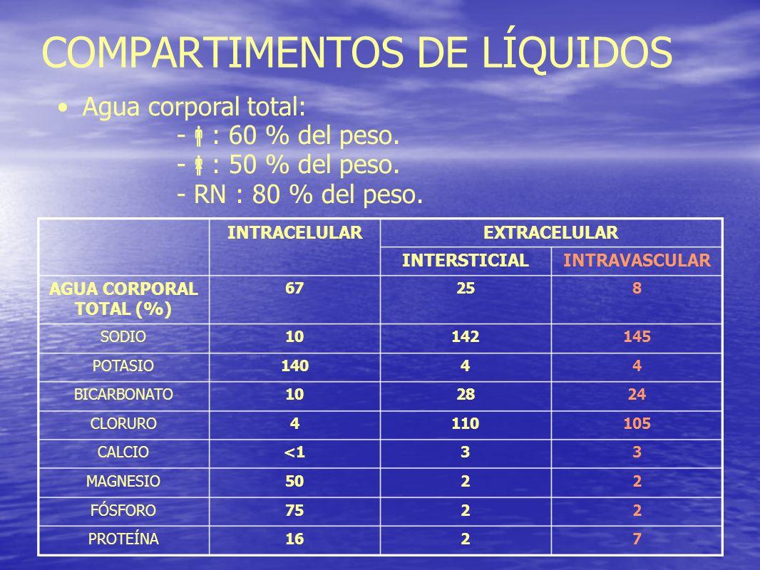 COMPARTIMENTOS DE LÍQUIDOS 82567 AGUA CORPORAL TOTAL (%) 7216PROTEÍNA 2275FÓSFORO 2250MAGNESIO 33<1CALCIO 1051104CLORURO 242810BICARBONATO 44140POTASI