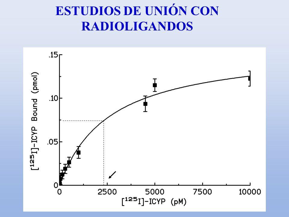 ESTUDIOS DE UNIÓN CON RADIOLIGANDOS Kd Bmax