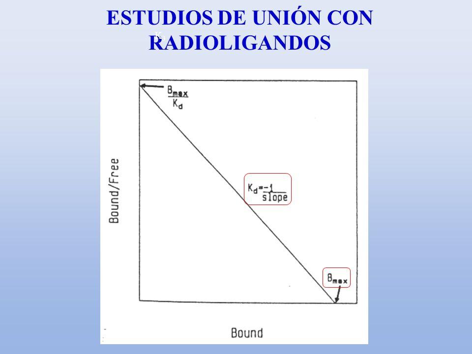 ESTUDIOS DE UNIÓN CON RADIOLIGANDOS K3K3