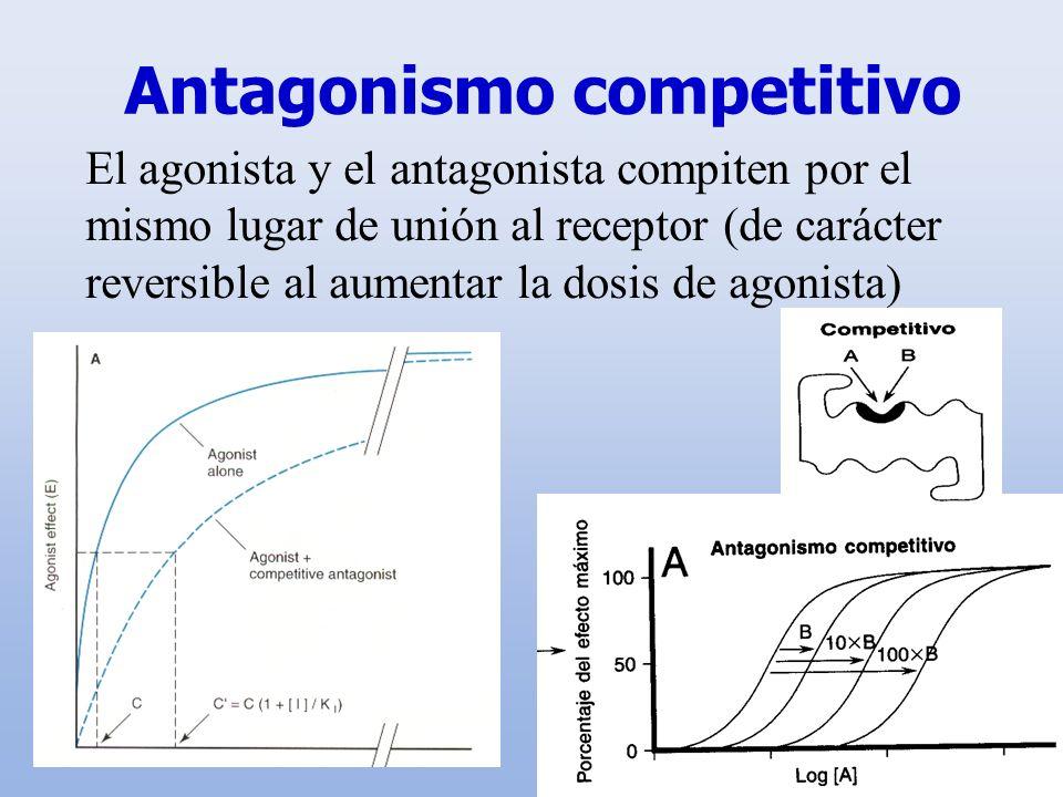 Antagonismo competitivo El agonista y el antagonista compiten por el mismo lugar de unión al receptor (de carácter reversible al aumentar la dosis de