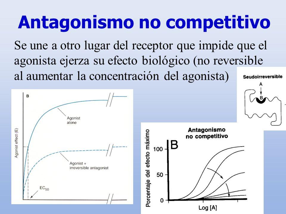 Antagonismo no competitivo Se une a otro lugar del receptor que impide que el agonista ejerza su efecto biológico (no reversible al aumentar la concen
