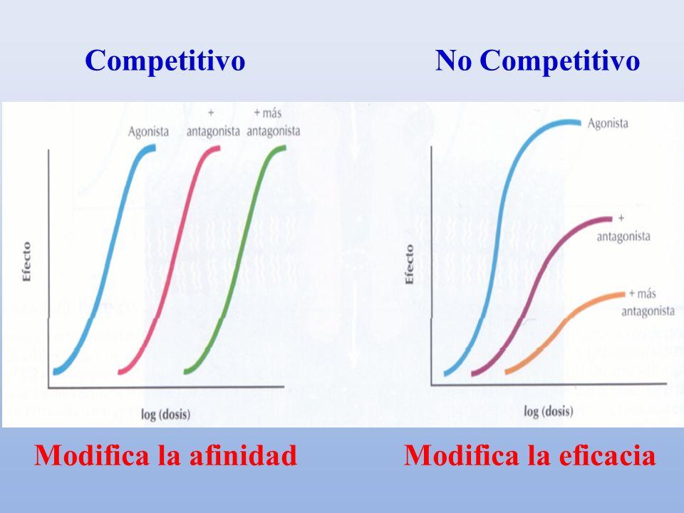 Competitivo No Competitivo Modifica la afinidad Modifica la eficacia