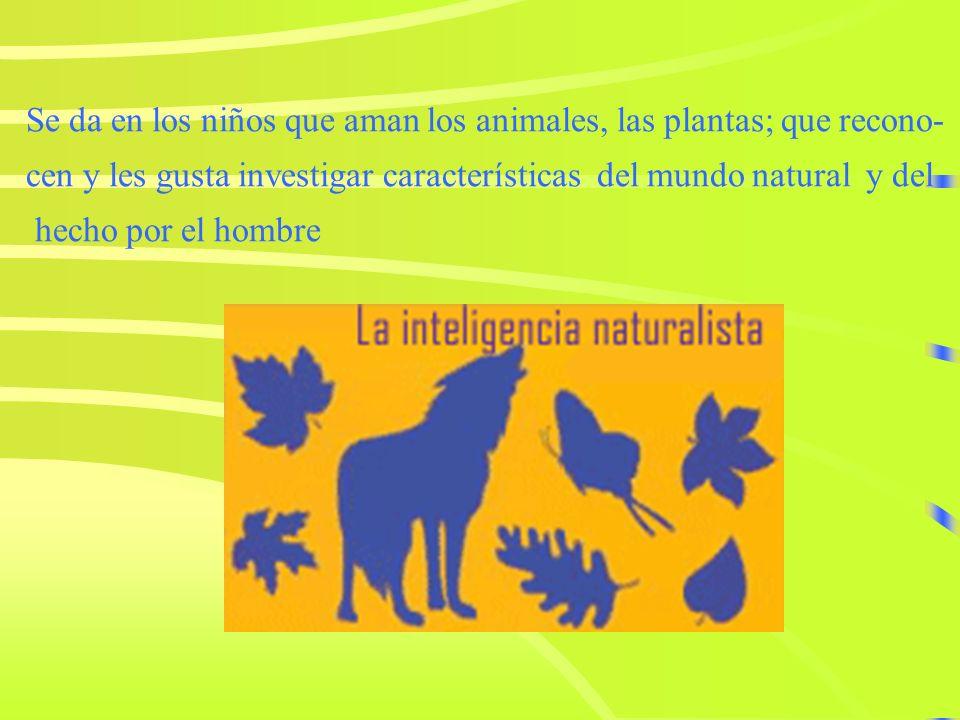 Inteligencia Naturalista Es la capacidad de distinguir, clasifica r y utilizar elementos del medio ambiente, objetos, animales o plantas. Tanto del am
