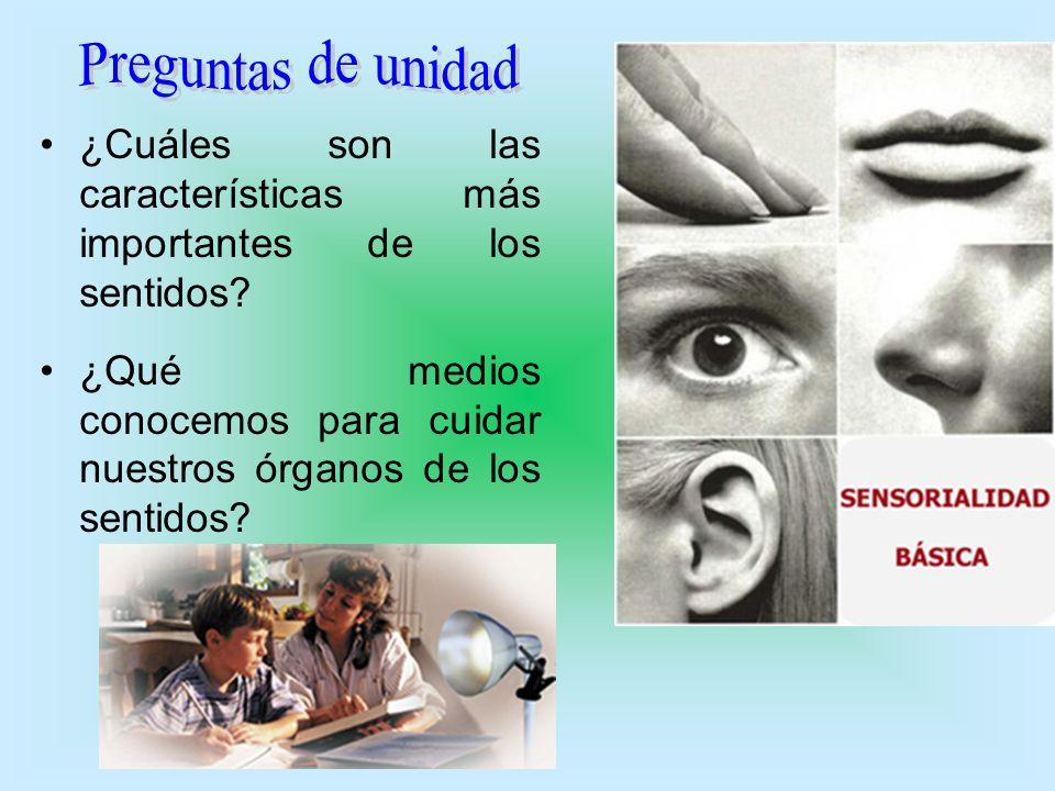 ¿Cuáles son las características más importantes de los sentidos? ¿Qué medios conocemos para cuidar nuestros órganos de los sentidos?
