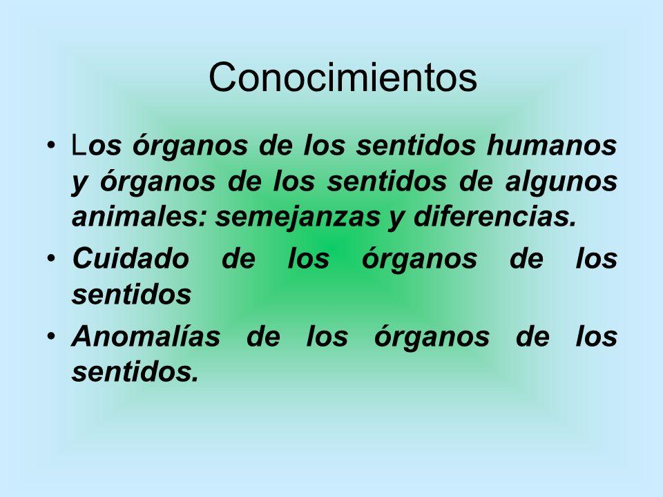 Conocimientos Los órganos de los sentidos humanos y órganos de los sentidos de algunos animales: semejanzas y diferencias. Cuidado de los órganos de l