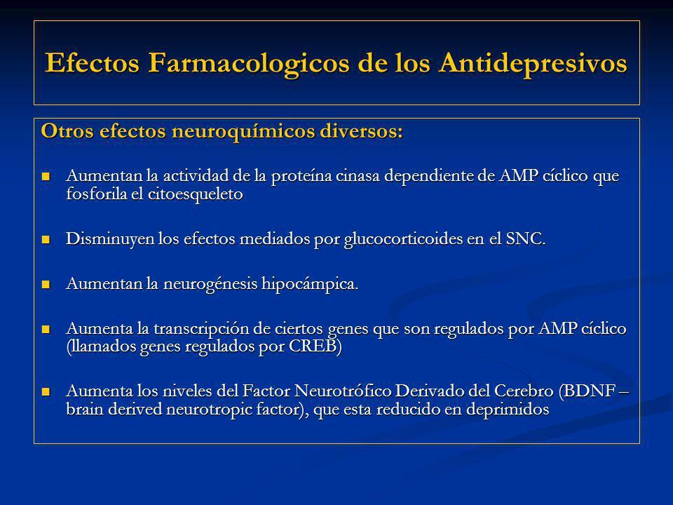 Efectos Farmacologicos de los Antidepresivos Otros efectos neuroquímicos diversos: Aumentan la actividad de la proteína cinasa dependiente de AMP cícl