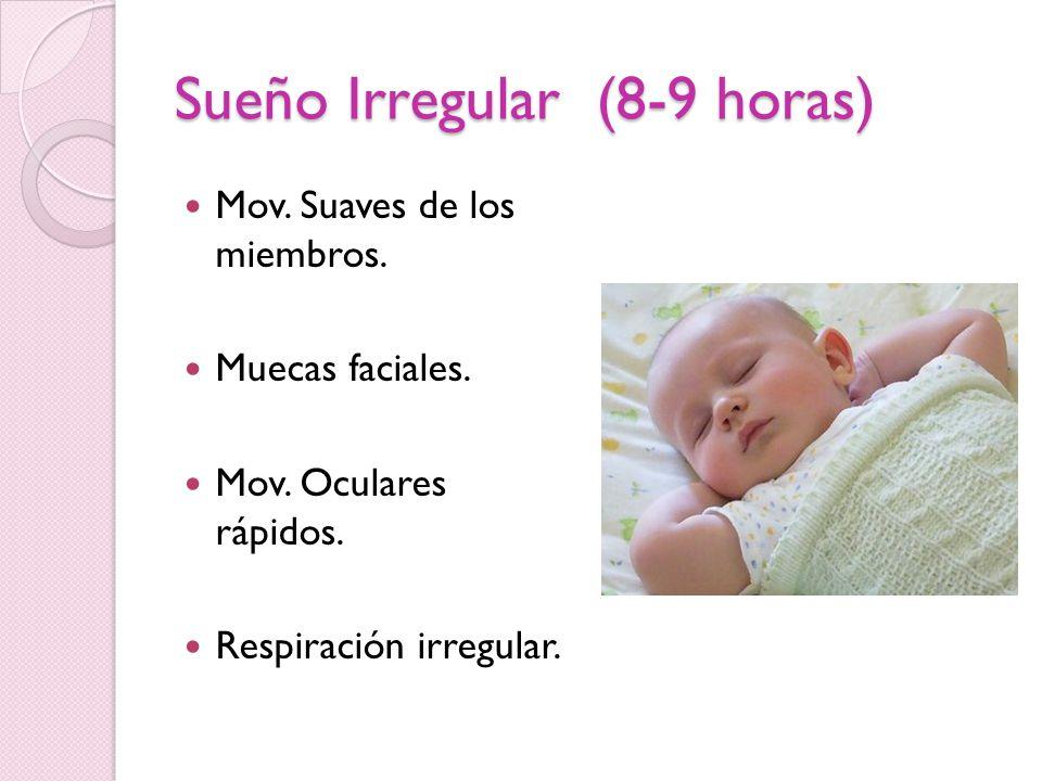 Sueño Irregular (8-9 horas) Mov. Suaves de los miembros. Muecas faciales. Mov. Oculares rápidos. Respiración irregular.