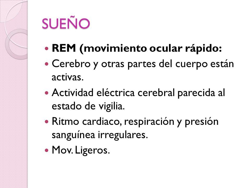 SUEÑO REM (movimiento ocular rápido: Cerebro y otras partes del cuerpo están activas. Actividad eléctrica cerebral parecida al estado de vigilia. Ritm