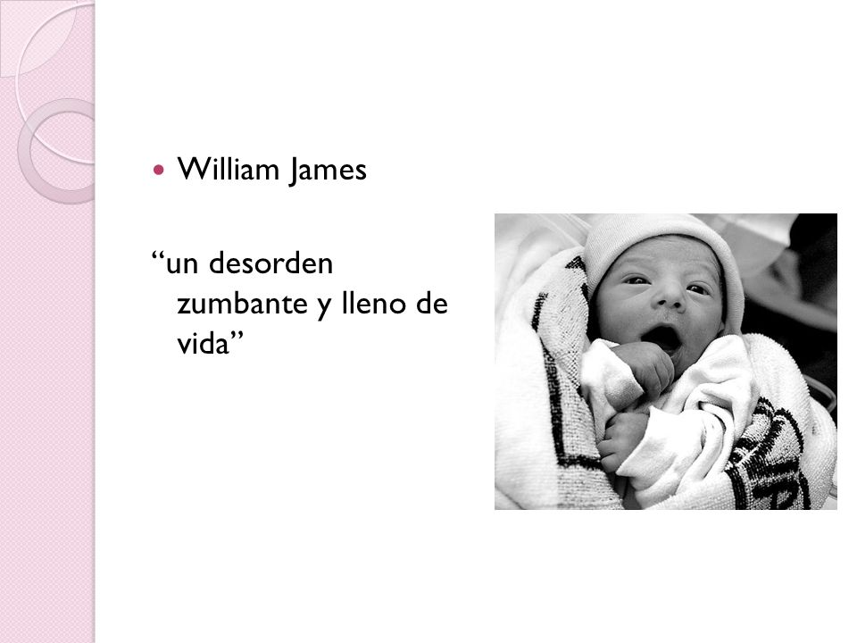 William James un desorden zumbante y lleno de vida