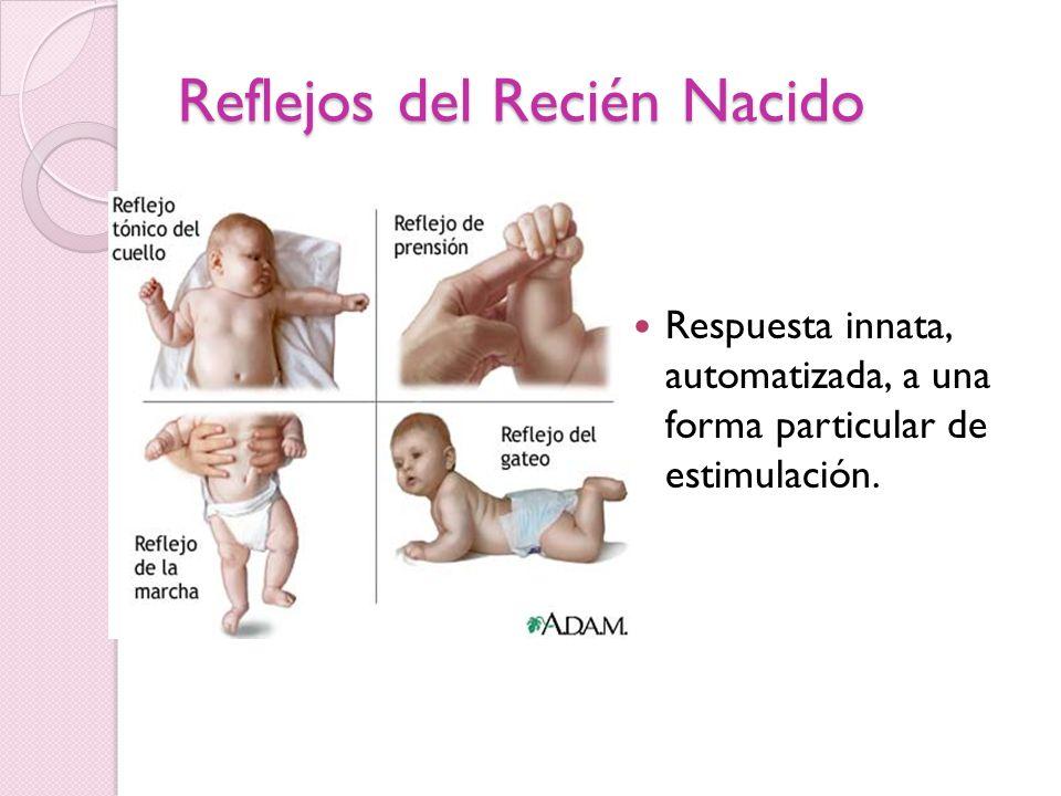 Reflejos del Recién Nacido Respuesta innata, automatizada, a una forma particular de estimulación.