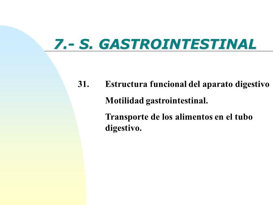 7.- S. GASTROINTESTINAL 31.Estructura funcional del aparato digestivo Motilidad gastrointestinal. Transporte de los alimentos en el tubo digestivo.
