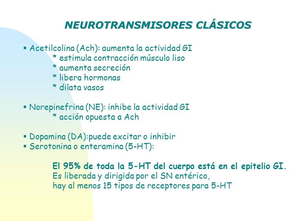 Acetilcolina (Ach): aumenta la actividad GI * estimula contracción músculo liso * aumenta secreción * libera hormonas * dilata vasos Norepinefrina (NE