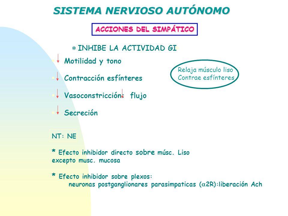 Relaja músculo liso Contrae esfínteres INHIBE LA ACTIVIDAD GI Motilidad y tono Contracción esfínteres Vasoconstricción: flujo Secreción NT: NE * Efect