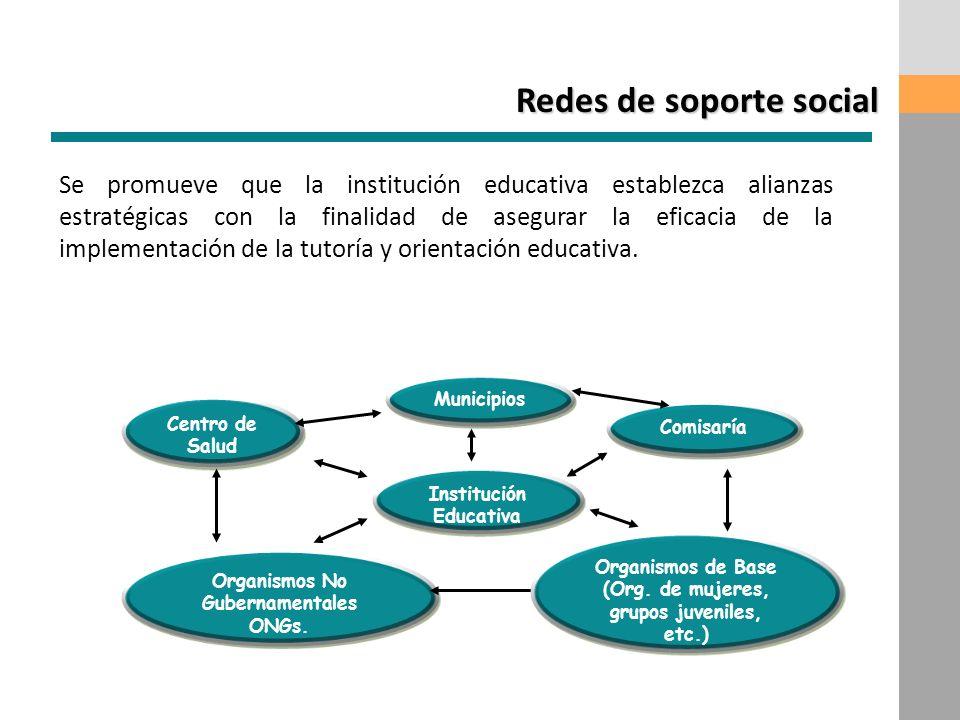 Para implementar cualquiera de los programas es importante que la institución educativa establezca alianzas estratégicas con otras instituciones, con