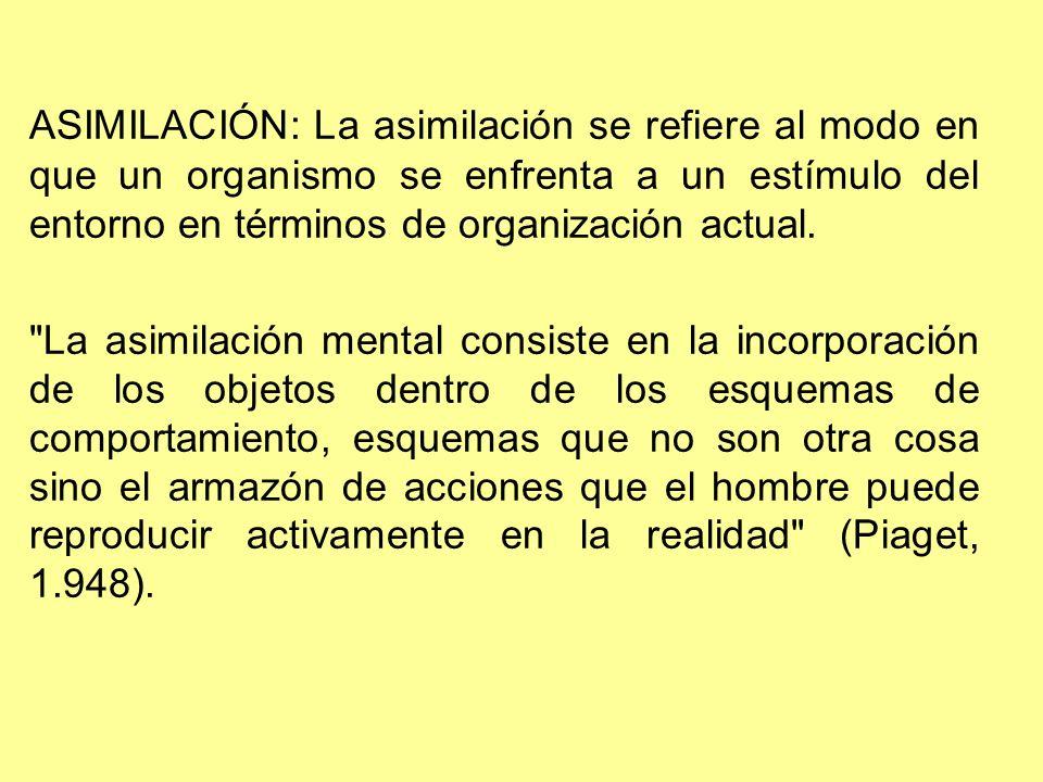 ACOMODACIÓN: La acomodación implica una modificación de la organización actual en respuesta a las demandas del medio.