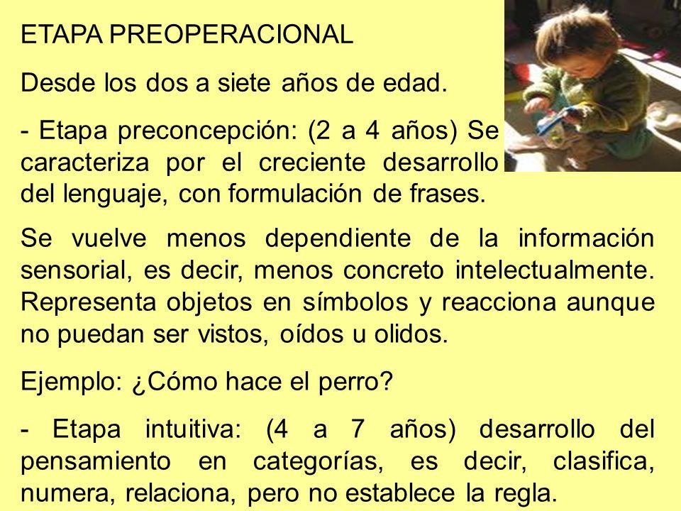 ETAPA PREOPERACIONAL Desde los dos a siete años de edad. - Etapa preconcepción: (2 a 4 años) Se caracteriza por el creciente desarrollo del lenguaje,