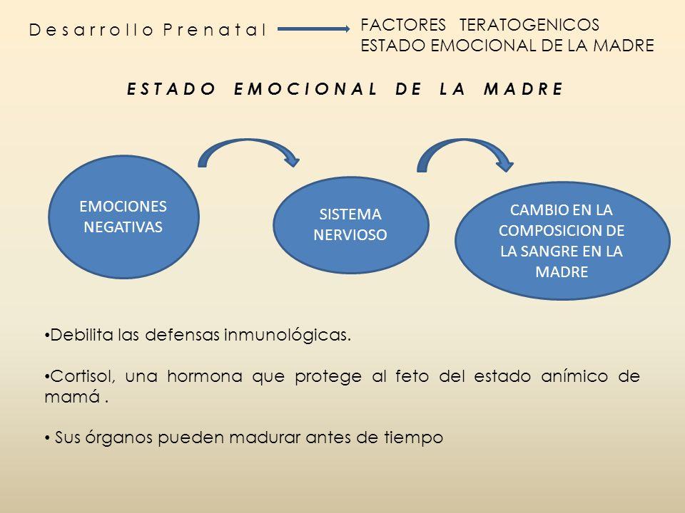 D e s a r r o l l o P r e n a t a l FACTORES TERATOGENICOS ESTADO EMOCIONAL DE LA MADRE EMOCIONES NEGATIVAS SISTEMA NERVIOSO CAMBIO EN LA COMPOSICION