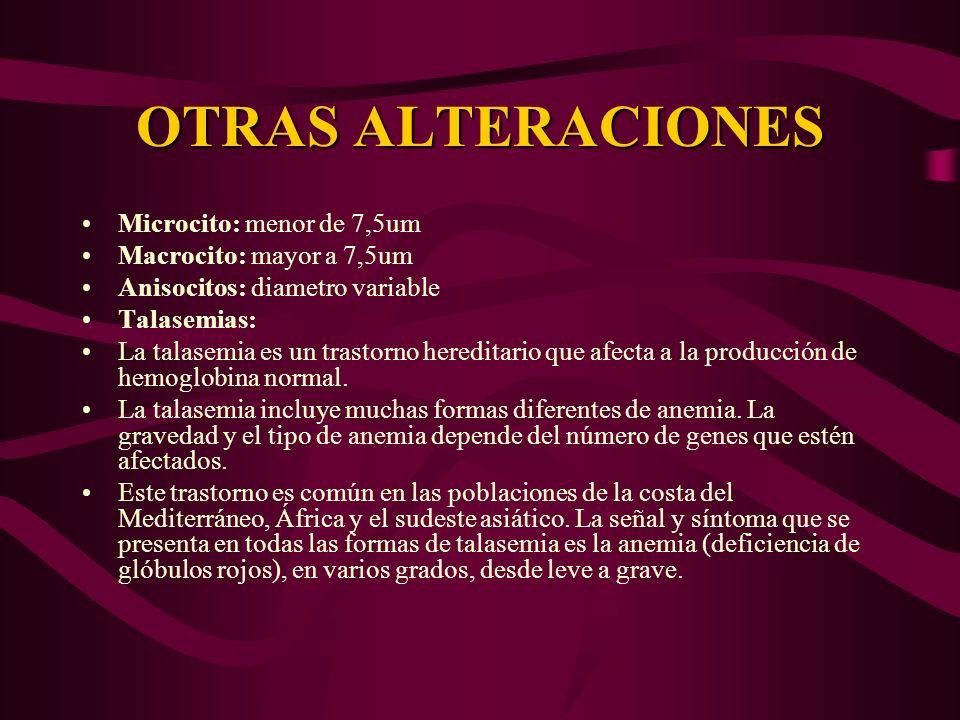 OTRAS ALTERACIONES Microcito: menor de 7,5um Macrocito: mayor a 7,5um Anisocitos: diametro variable Talasemias: La talasemia es un trastorno hereditar