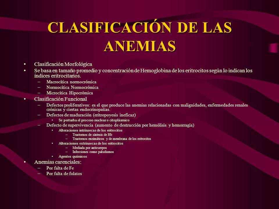 CLASIFICACIÓN DE LAS ANEMIAS Clasificación Morfológica Se basa en tamaño promedio y concentración de Hemoglobina de los eritrocitos según lo indican l