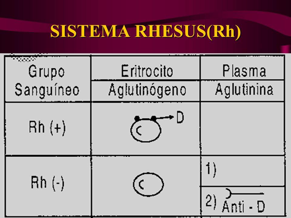 SISTEMA RHESUS(Rh)
