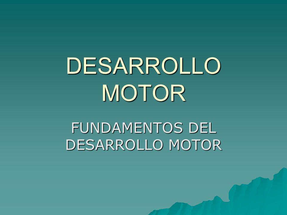 DESARROLLO MOTOR FUNDAMENTOS DEL DESARROLLO MOTOR