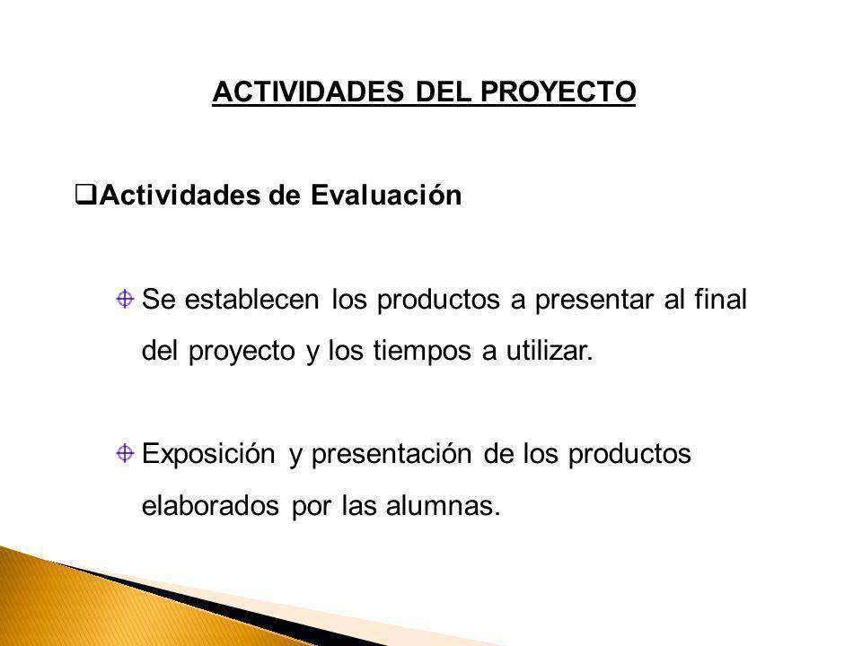 ACTIVIDADES DEL PROYECTO Actividades de Evaluación Se establecen los productos a presentar al final del proyecto y los tiempos a utilizar.