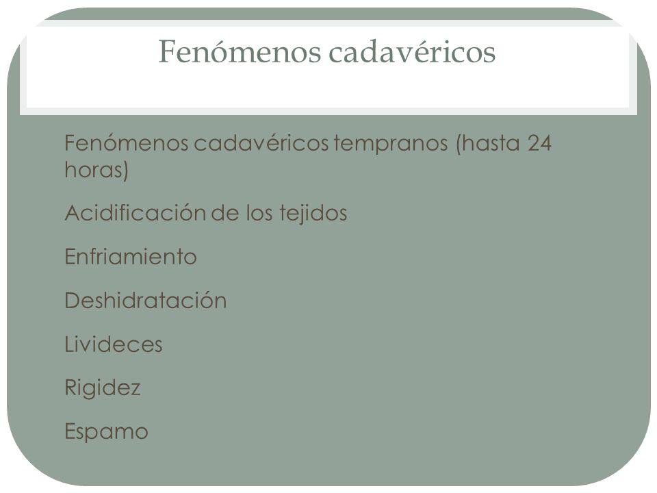 Fenómenos cadavéricos Fenómenos cadavéricos tempranos (hasta 24 horas) 1. Acidificación de los tejidos 2. Enfriamiento 3. Deshidratación 4. Livideces