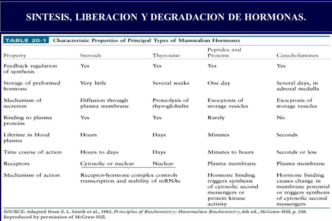 13 HORMONAS. Receptores Intracelulares. Hormonas Lipofílicas. Receptores Intracelulares. Hormonas Lipofílicas. Receptores Membranales. Hormonas Lipofí