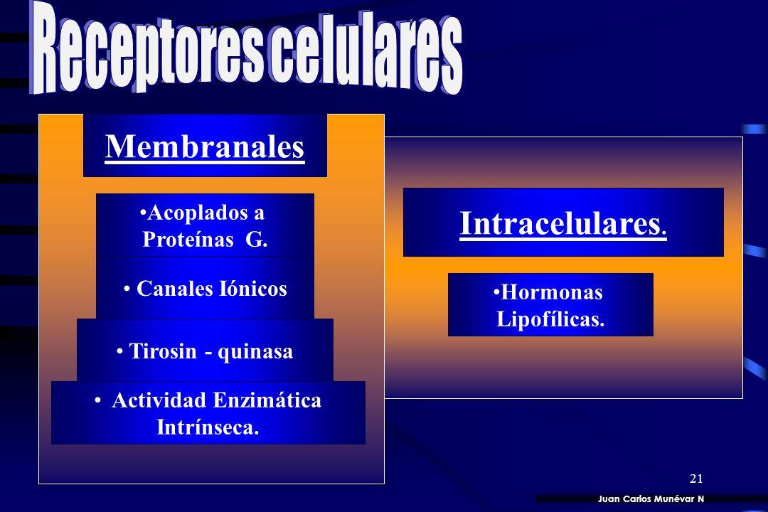 20 MECANISMO. INTRACRINA. AUTOCRINA. PARACRINA PARACRINA. SINAPTICA. SEÑAL. Factores de crecimiento Neurotransmisor HORMONA. Quemoquinas Quemoquinas.