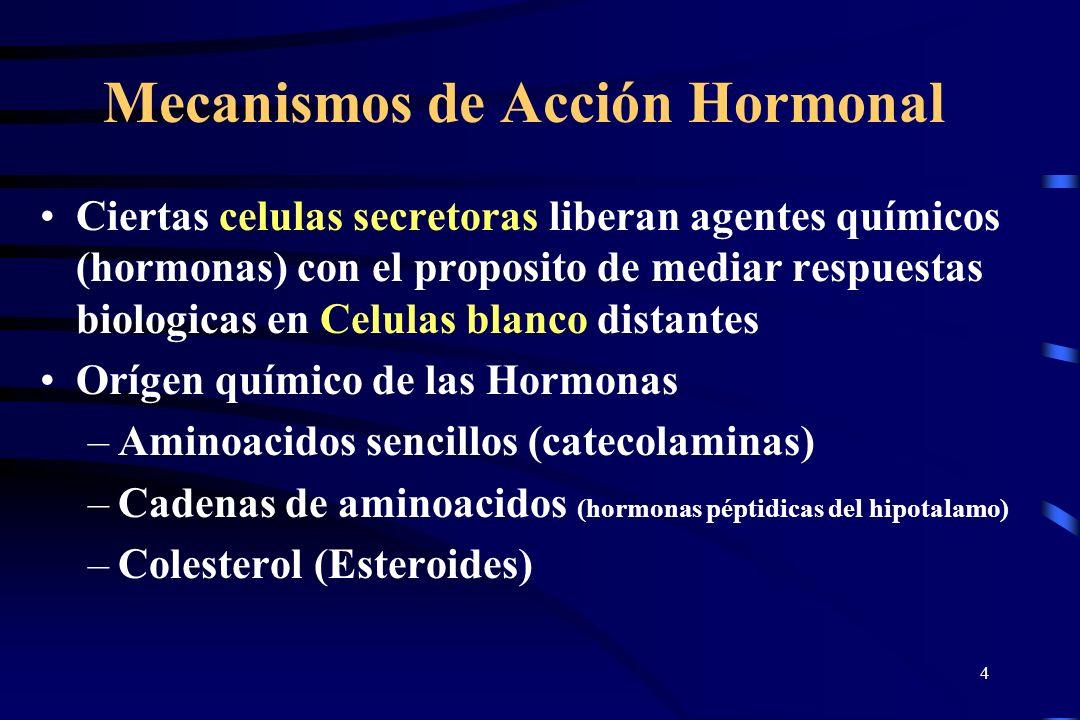 3 HORMONA Son sustancias secretadas por células especializadas, localizadas en glándulas de secreción interna o glándulas endocrinas (carentes de cond