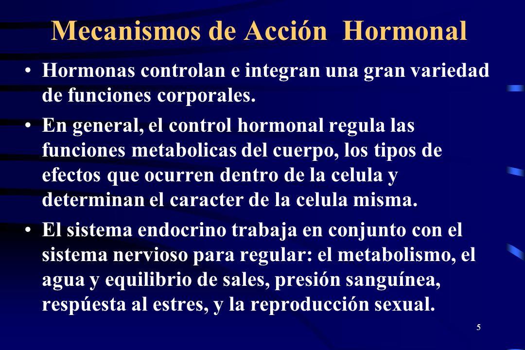 4 Mecanismos de Acción Hormonal Ciertas celulas secretoras liberan agentes químicos (hormonas) con el proposito de mediar respuestas biologicas en Cel