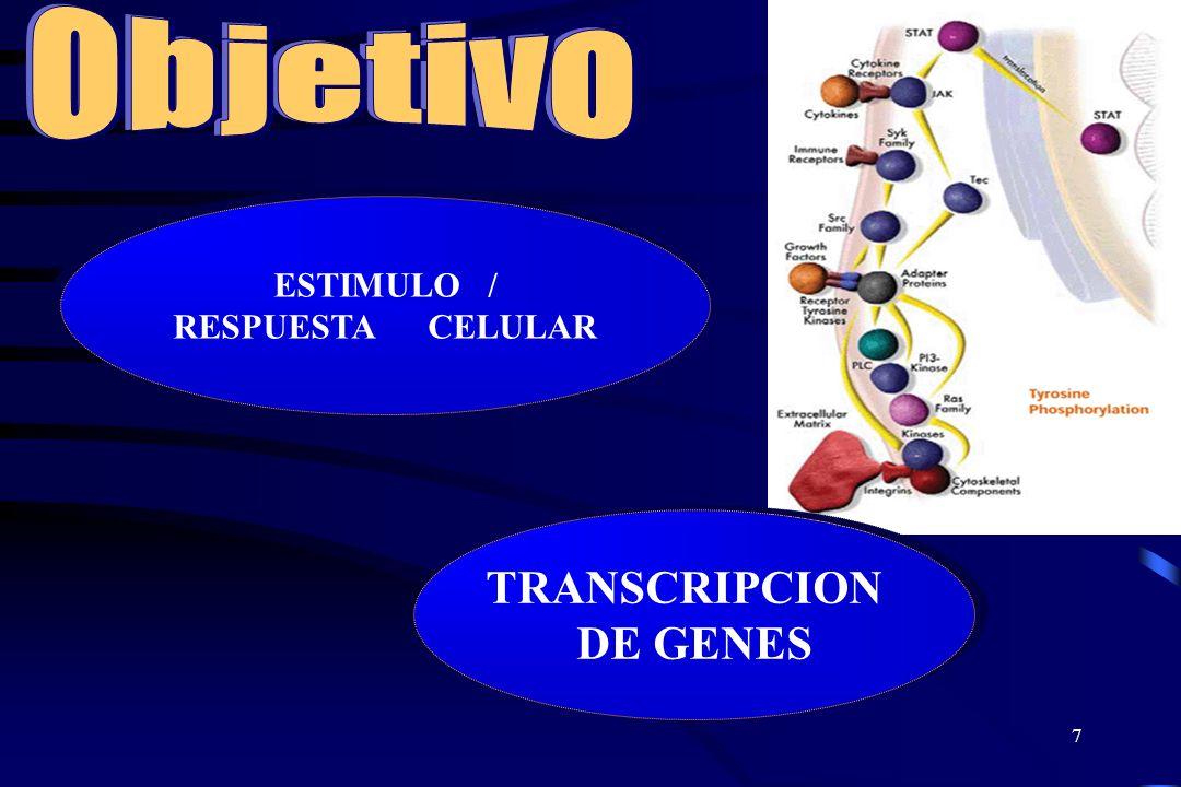 6 Formas de Comunicación Hormonal 1. Endocrina = las hormonas son secretedas a la sangre para regular la función de células blanco distantes 2. Paracr