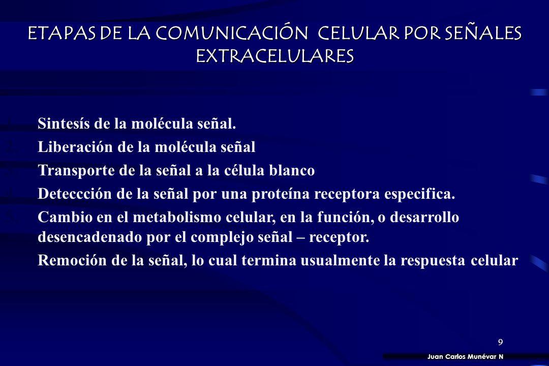 8 RESPUESTA RECEPTOR LIGANDO ESQUEMA GENERAL DE UN SISTEMA DE SEÑALIZACIÓN CELULAR Juan Carlos Munévar N