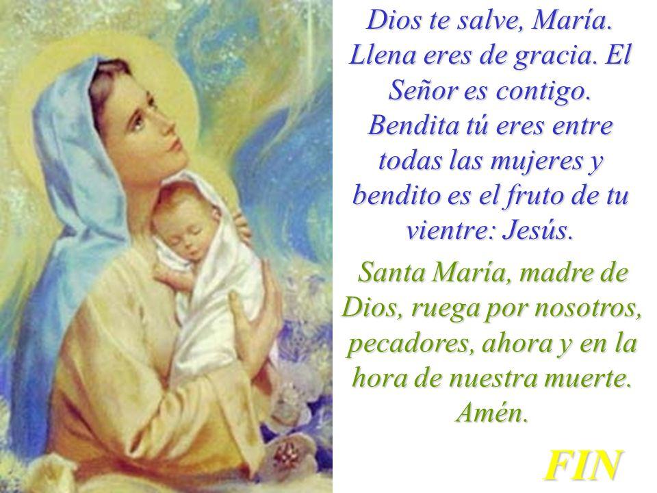 Dios te salve, María. Llena eres de gracia. El Señor es contigo. Bendita tú eres entre todas las mujeres y bendito es el fruto de tu vientre: Jesús. S