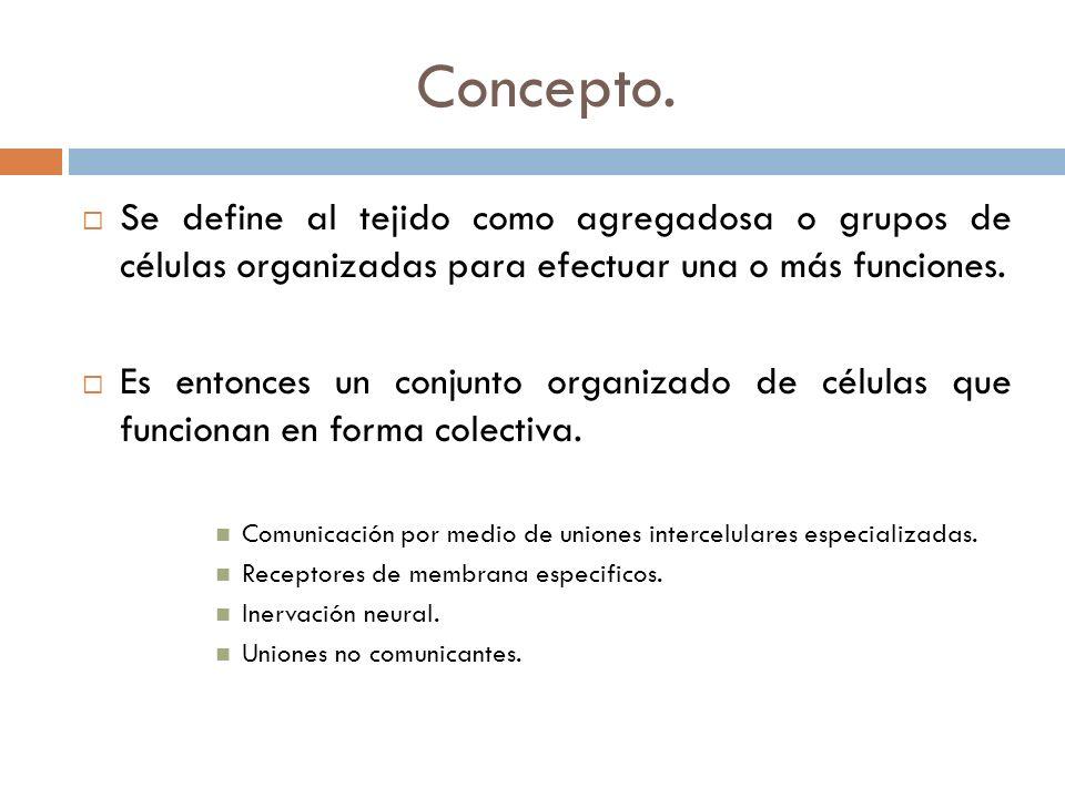 Concepto. Se define al tejido como agregadosa o grupos de células organizadas para efectuar una o más funciones. Es entonces un conjunto organizado de