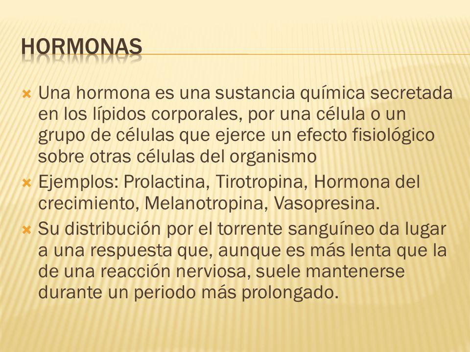Una hormona es una sustancia química secretada en los lípidos corporales, por una célula o un grupo de células que ejerce un efecto fisiológico sobre