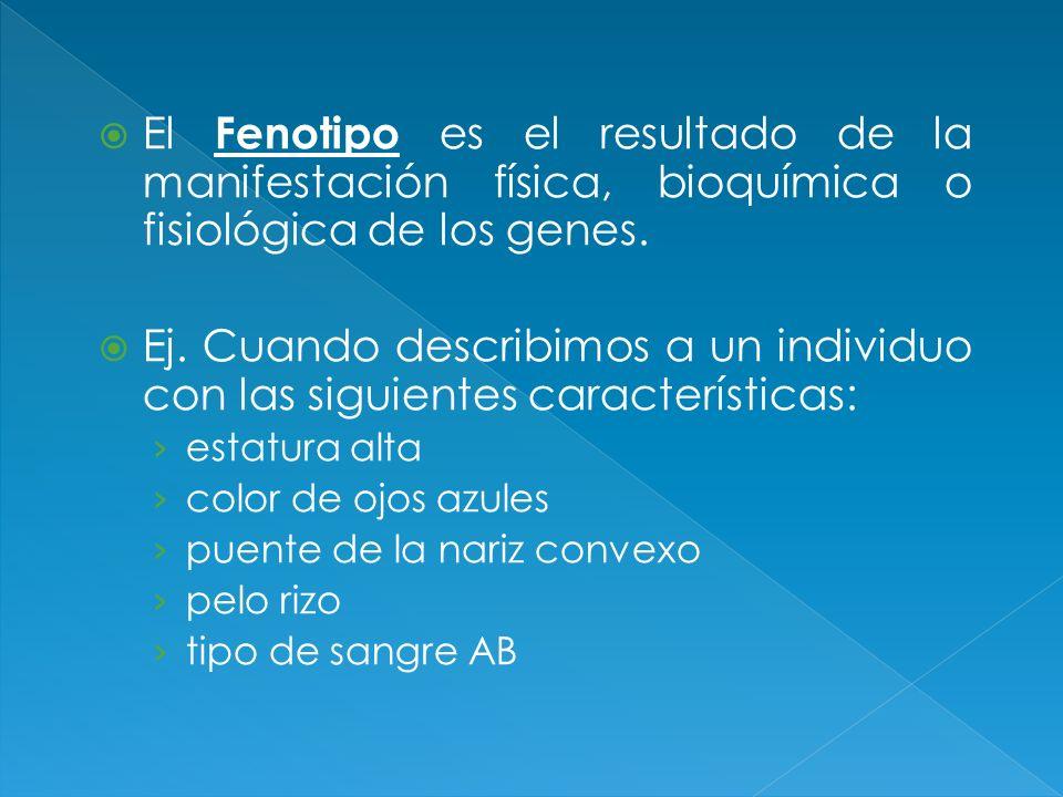 El Fenotipo es el resultado de la manifestación física, bioquímica o fisiológica de los genes. Ej. Cuando describimos a un individuo con las siguiente