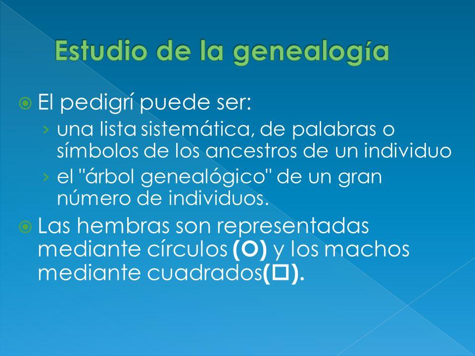 El pedigrí puede ser: una lista sistemática, de palabras o símbolos de los ancestros de un individuo el