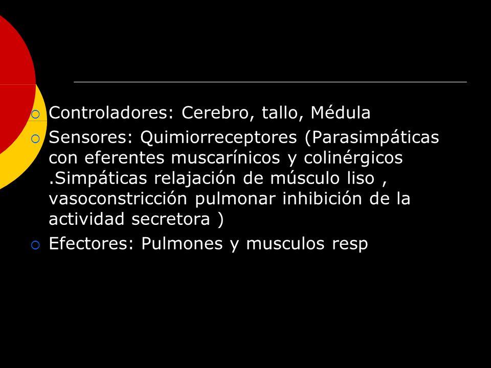Controladores: Cerebro, tallo, Médula Sensores: Quimiorreceptores (Parasimpáticas con eferentes muscarínicos y colinérgicos.Simpáticas relajación de m