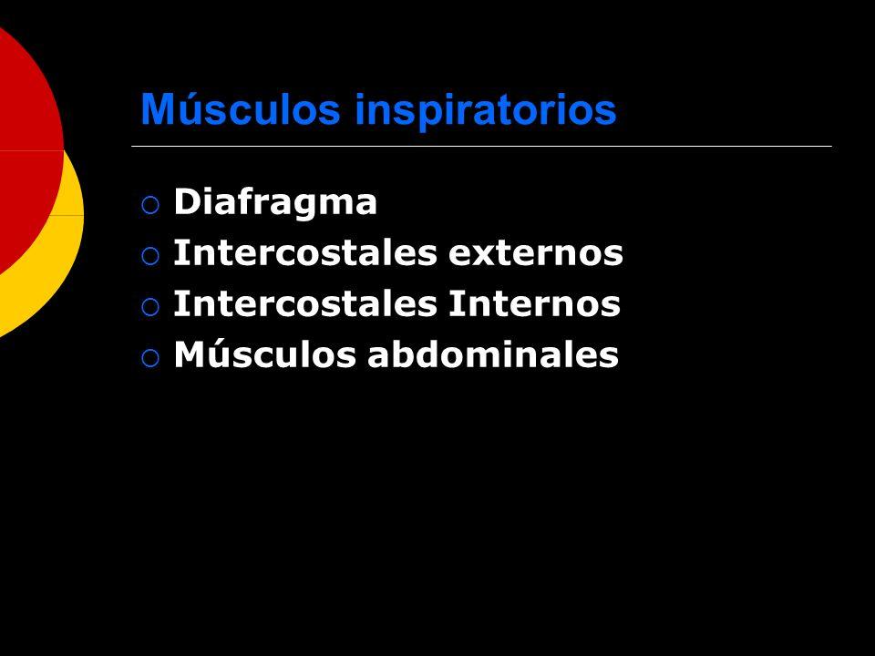 Músculos inspiratorios Diafragma Intercostales externos Intercostales Internos Músculos abdominales
