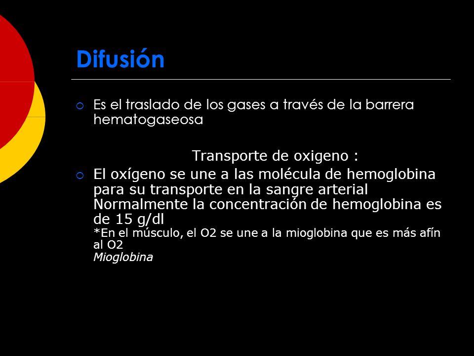 Difusión Es el traslado de los gases a través de la barrera hematogaseosa Transporte de oxigeno : El oxígeno se une a las molécula de hemoglobina para