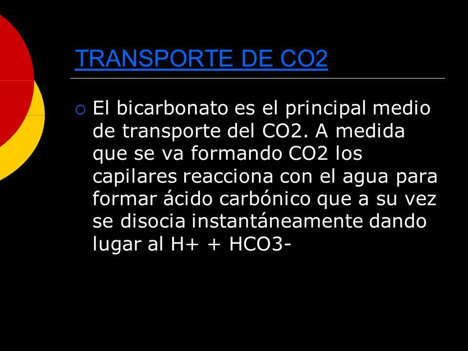 TRANSPORTE DE CO2 El bicarbonato es el principal medio de transporte del CO2. A medida que se va formando CO2 los capilares reacciona con el agua para