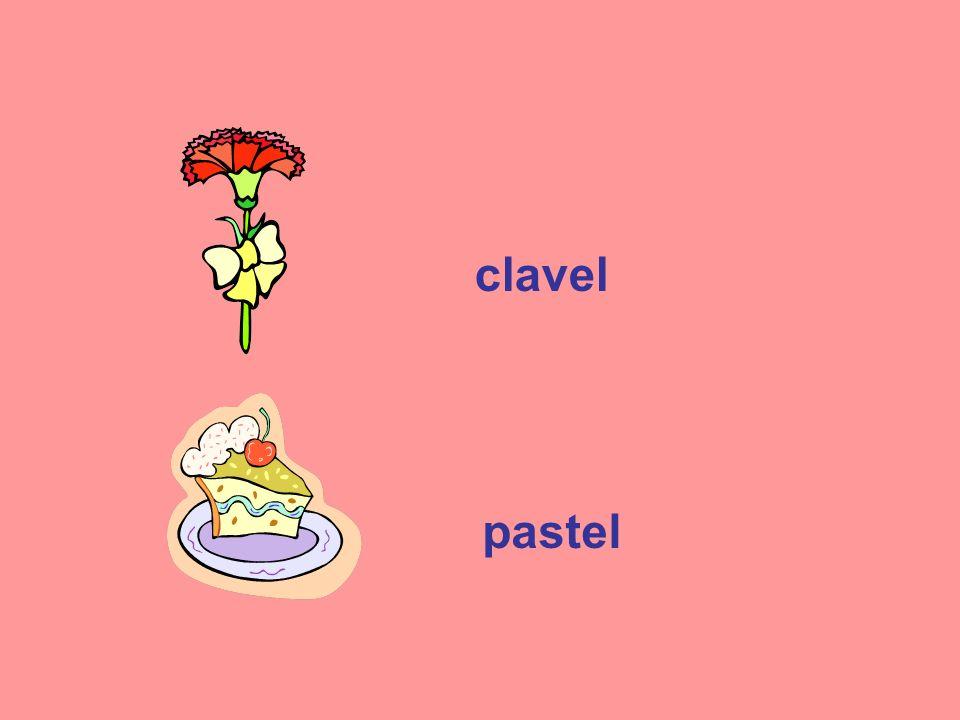 clavel pastel