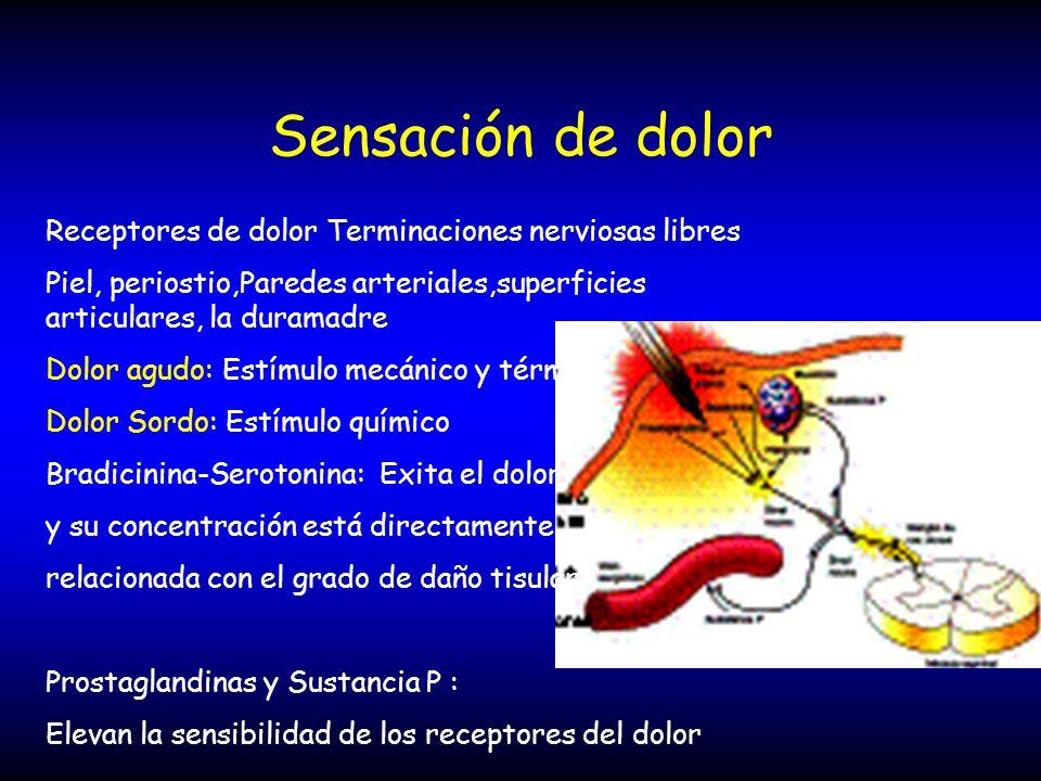 Sensación de dolor Receptores de dolor Terminaciones nerviosas libres Piel, periostio,Paredes arteriales,superficies articulares, la duramadre Dolor a